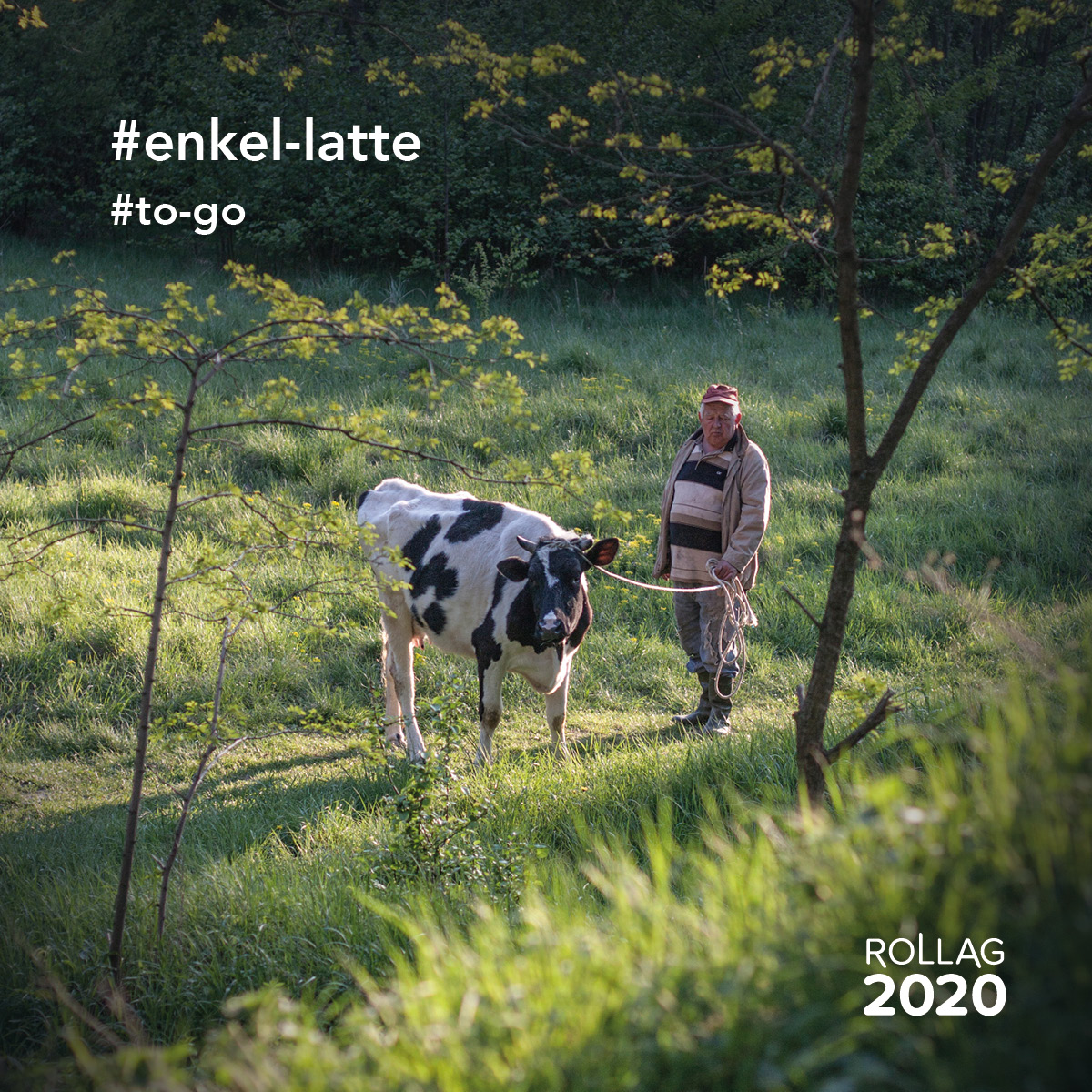 Rollag 2020